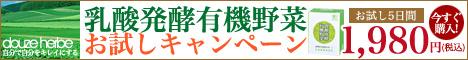 乳酸発酵有機野菜5日間お試しキャンペーン