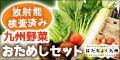 放射能検査済みの九州野菜宅配ならはたちょく九州