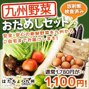 放射能検査済みの九州野菜ならはたちょく九州