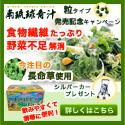 """南琉球青汁""""粒タイプ""""発売記念 プレゼントキャンペーン"""