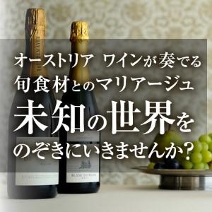 オーストリア ワイン定期購入