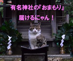明治神宮・東京大神宮の御守り購入代行ショップです。 明治神宮は日本で最も参拝者が多い神社です。 東京大神宮は恋愛で有名な神社で若い女性に大人気です。