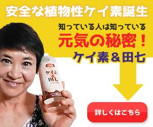 植物性ケイ素みずほらケイ素&田七