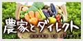 新鮮野菜を農家から直送!生産者の思いも伝わる本物の国産野菜を是非!