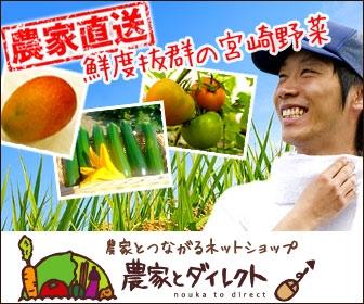 新鮮野菜を農家から直送!生産者の思いも伝わる本物の宮崎野菜を是非!
