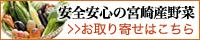 EC:200x40 安全安心の宮崎県産野菜「百姓隊」