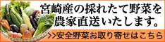 百姓隊が宮崎県産の採れたて野菜を農家直送いたします。