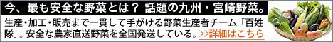 農家直送!安全な宮崎県産野菜の通販「百姓隊」